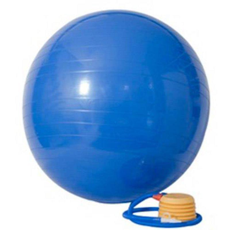Gym Ball 65cm com Bomba de Ar - Acte Sports - MadeiraMadeira 42b033a94e689